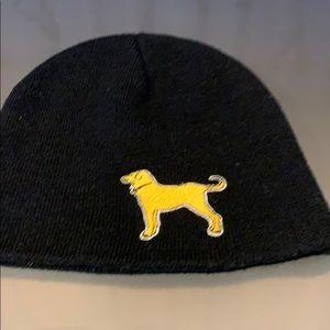 The Black Dog Bruins Hat